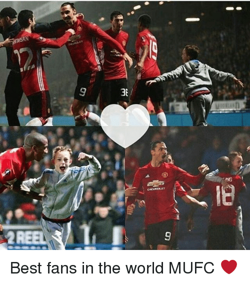 Memes, Best, and World: use /厉  er110 Best fans in the world MUFC ❤