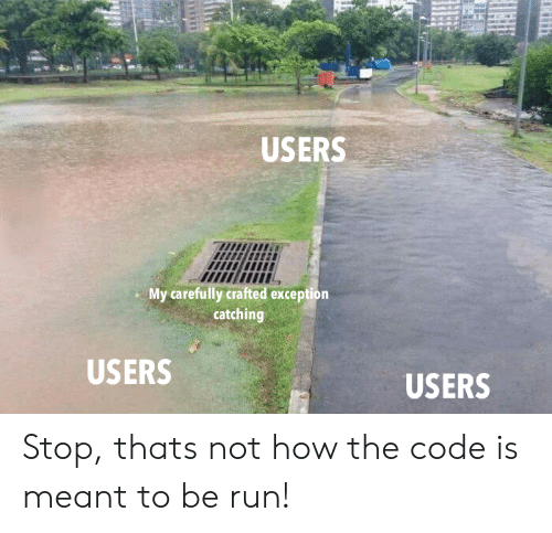 Run, How, and Code: USERS  l!  ltii  My carefully crafted exception  catching  USERS  USERS Stop, thats not how the code is meant to be run!