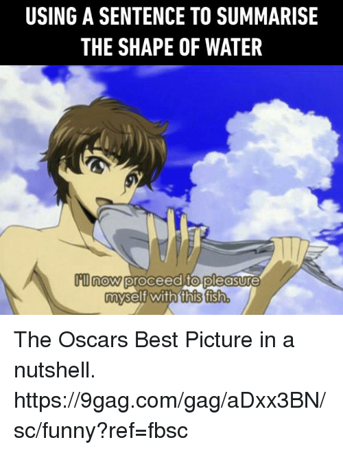 9gag, Dank, and Funny: USING A SENTENCE TO SUMMARISE  THE SHAPE OF WATER  m now proceed to pleasure  myself with this fisth The Oscars Best Picture in a nutshell.  https://9gag.com/gag/aDxx3BN/sc/funny?ref=fbsc
