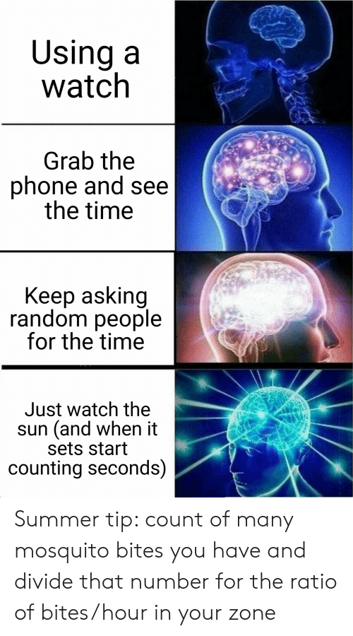 Phone, Summer, and Time: Using a  watch  Grab the  phone and see  the time  Keep asking  random people  for the time  Just watch the  sun (and when it  sets start  counting seconds) Summer tip: count of many mosquito bites you have and divide that number for the ratio of bites/hour in your zone