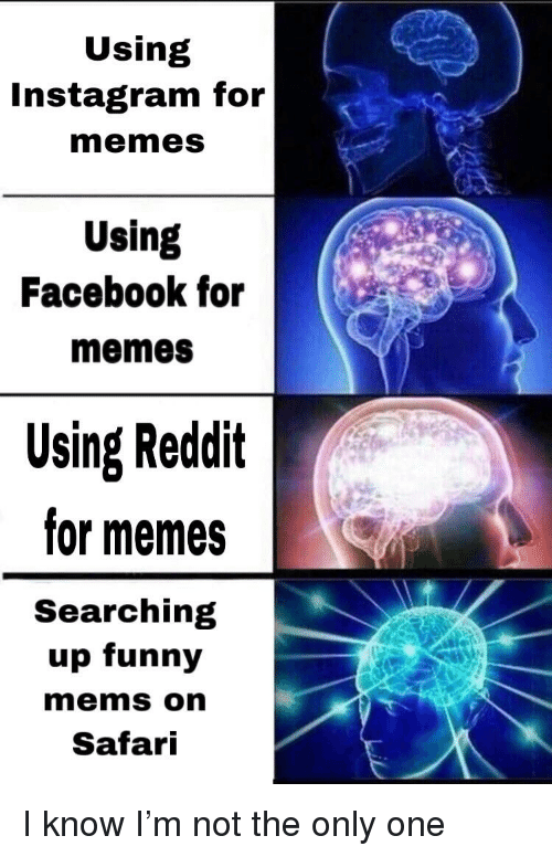 Facebook, Funny, and Instagram: Using  Instagram for  memes  Using  Facebook for  memeS  Using Reddit  for memes  Searching  up funny  mems on  Safari