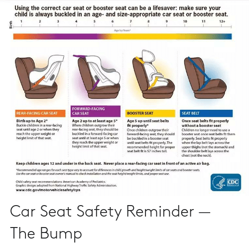 Astounding Using The Correct Car Seat Or Booster Seat Can Be A Evergreenethics Interior Chair Design Evergreenethicsorg