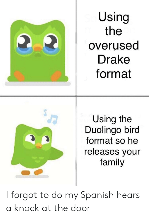 Drake, Family, and Spanish: Using  the  overused  Drake  format  Using the  Duolingo bird  format so he  releases vour  family I forgot to do my Spanish hears a knock at the door