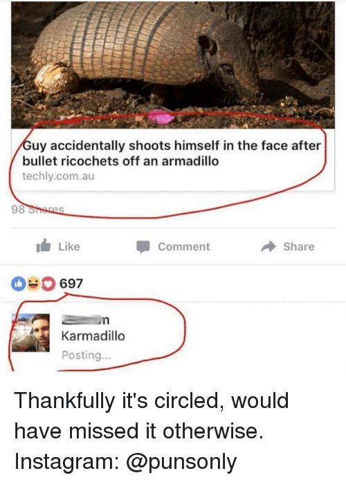 Instagram, Com, and Armadillo: uy accidentally shoots himself in the face after  bullet ricochets off an armadillo  techly.com.au  Like  Comment  → Share  697  Karmadillo  Posting... Thankfully it's circled, would have missed it otherwise.  Instagram: @punsonly