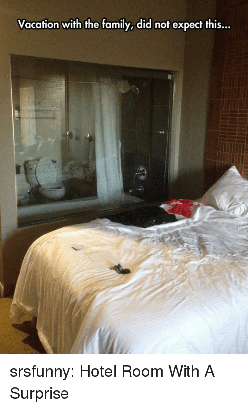 Family, Tumblr, and Blog: Vacation with the family, did not expect this...  Il srsfunny:  Hotel Room With A Surprise
