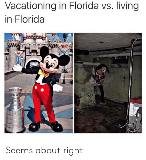 Florida, Living, and Right: Vacationing in Florida vs. living  in Florida Seems about right