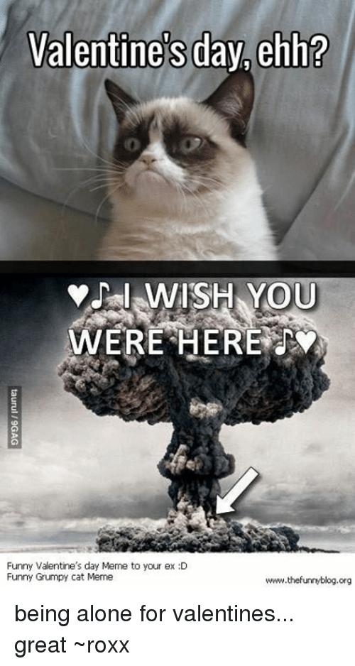 Being Alone, Funny, And Meme: Valentineu0027s Day Ehh? I WISH YOU WERE