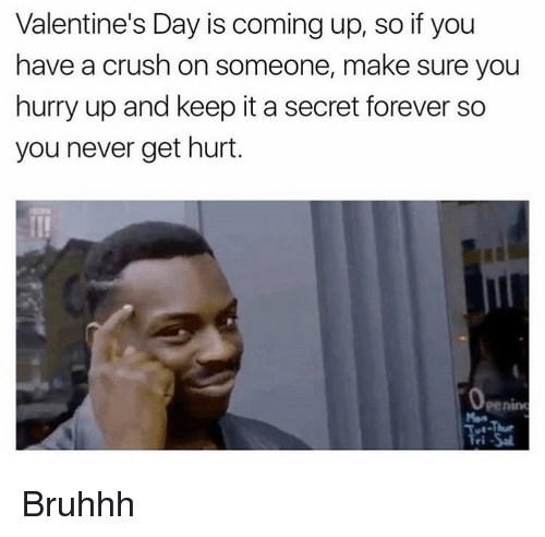Memes, 🤖, and Hurry: Valentine's Day is coming up, so if you  have a crush on someone, make sure you  hurry up and keep it a secret forever so  you never get hurt Bruhhh
