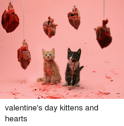Hearts and Kittens