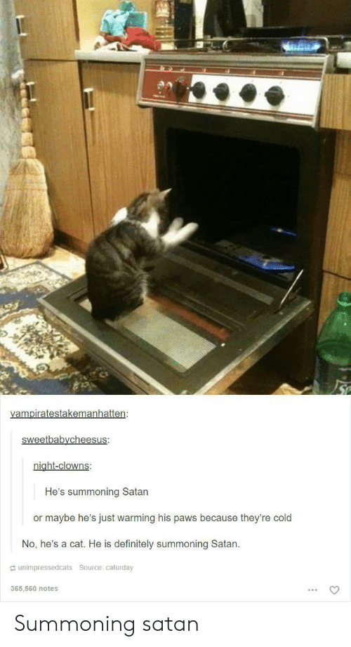Caturday, Definitely, and Clowns: vampiratestakemanhatten:  sweetbabycheesus:  night-clowns:  He's summoning Satan  or maybe he's just warming his paws because they're cold  No, he's a cat. He is definitely summoning Satan  unimpressedcats Source: caturday  365,560 notes Summoning satan