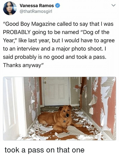 """Good, Relatable, and Boy: Vanessa Ramos  othatRamosgirl  """"Good Boy Magazine called to say that I was  PROBABLY going to be named """"Dog of the  Year,"""" like last year, but I would have to agree  to an interview and a major photo shoot. l  said probably is no good and took a pass.  Thanks anyway"""" took a pass on that one"""