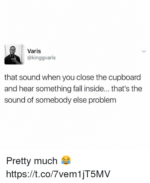 Fall, Sound, and The Sounds: Varis  @kinggvaris  that sound when you close the cupboard  and hear something fall inside... that's the  sound of somebody else problem Pretty much 😂 https://t.co/7vem1jT5MV