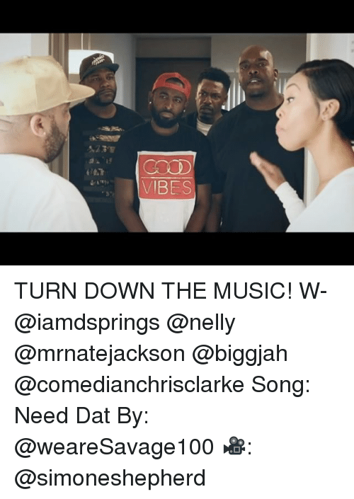 Memes, Music, and Nelly: VBES TURN DOWN THE MUSIC! W- @iamdsprings @nelly @mrnatejackson @biggjah @comedianchrisclarke Song: Need Dat By: @weareSavage100 🎥: @simoneshepherd