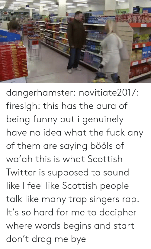 Funny, Rap, and Trap: & Veg dangerhamster: novitiate2017:  firesigh:  this has the aura of being funny but i genuinely have no idea what the fuck any of them are saying  bööls of wa'ah  this is what Scottish Twitter is supposed to sound like   I feel like Scottish people talk like many trap singers rap. It's so hard for me to decipher where words begins and start don't drag me bye