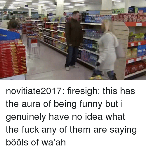 Funny, Tumblr, and Blog: & Veg novitiate2017: firesigh:  this has the aura of being funny but i genuinely have no idea what the fuck any of them are saying  bööls of wa'ah