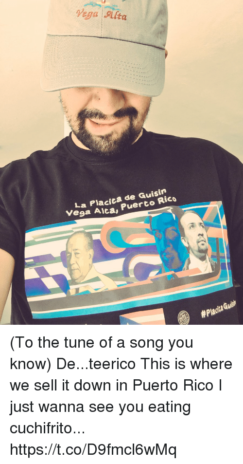 Memes, Puerto Rico, and A Song: Vega Alta  La Placica de Guisin  Vega Aica, Puerto Rico  (To the tune of a song you know) De...teerico This is where we sell it down in Puerto Rico I just wanna see you eating cuchifrito... https://t.co/D9fmcl6wMq