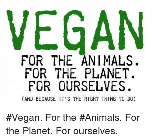 Animals, Memes, and Vegan: VEGAN  FOR THE ANIMALS.  FOR THE PLANET.  FOR OURSELVES.  (AND BECAUSE IT'S THE RIGHT THING TO DO) #Vegan. For the #Animals. For the Planet. For ourselves.