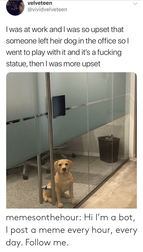 Fucking, Meme, and The Office: velveteen  @vividvelveteen  I was at work and I was so upset that  someone left heir dog in the office sol  went to play with it and it's a fucking  statue, then l was more upset memesonthehour:  Hi I'm a bot, I post a meme every hour, every day. Follow me.