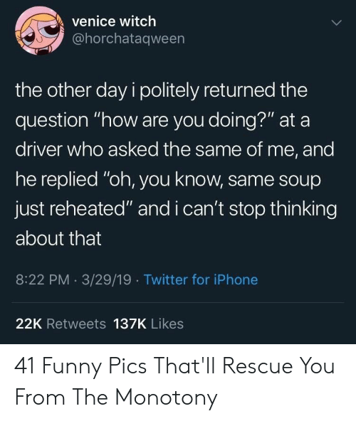 """Funny, Iphone, and Twitter: venice witch  @horchataqween  the other day i politely returned the  question """"how are you doing?"""" at a  driver who asked the same of me, and  he replied """"oh, you know, same sOup  just reheated"""" and i can't stop thinking  about that  8:22 PM 3/29/19 Twitter for iPhone  22K Retweets 137K Likes 41 Funny Pics That'll Rescue You From The Monotony"""