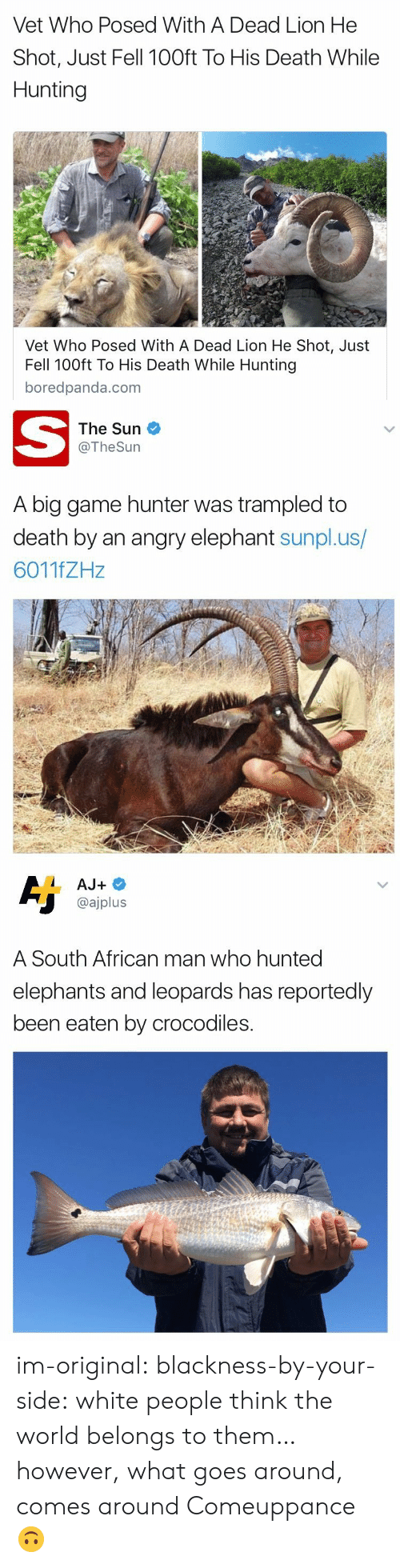 Tumblr, White People, and Hunting: Vet Who Posed With A Dead Lion He  Shot, Just Fell 100ft To His Death While  Hunting  Vet Who Posed With A Dead Lion He Shot, Just  Fell 100ft To His Death While Hunting  boredpanda.com   The Sun  @TheSurn  A big game hunter was trampled to  death by an angry elephant sunpl.us/  6011fZHz   @ajplus  A South African man who hunted  elephants and leoparas has reportedly  been eaten by crocodiles. im-original: blackness-by-your-side:  white people think the world belongs to them… however, what goes around, comes around  Comeuppance 🙃