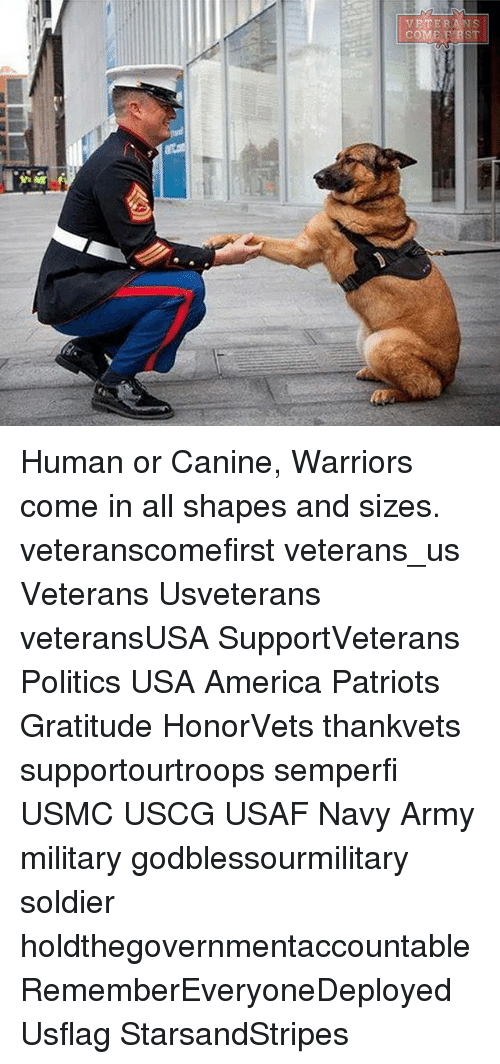 America, Memes, and Patriotic: VETERANS  COME F BST Human or Canine, Warriors come in all shapes and sizes. veteranscomefirst veterans_us Veterans Usveterans veteransUSA SupportVeterans Politics USA America Patriots Gratitude HonorVets thankvets supportourtroops semperfi USMC USCG USAF Navy Army military godblessourmilitary soldier holdthegovernmentaccountable RememberEveryoneDeployed Usflag StarsandStripes