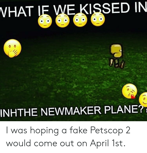 VHAT LE WE KISSED IN INHTHE NEWMAKER PLANE? I Was Hoping a