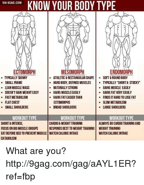 Via 9GAGCOM KNOW YOUR BODY TYPE ECTO ENDOMORPH MESOMORPH ATHLETIC