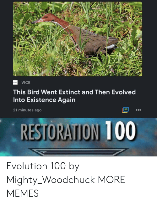 Dank, Memes, and Target: VICE  This Bird Went Extinct and Then Evolved  Into Existence Again  21 minutes ago  RESTORATION 100 Evolution 100 by Mighty_Woodchuck MORE MEMES