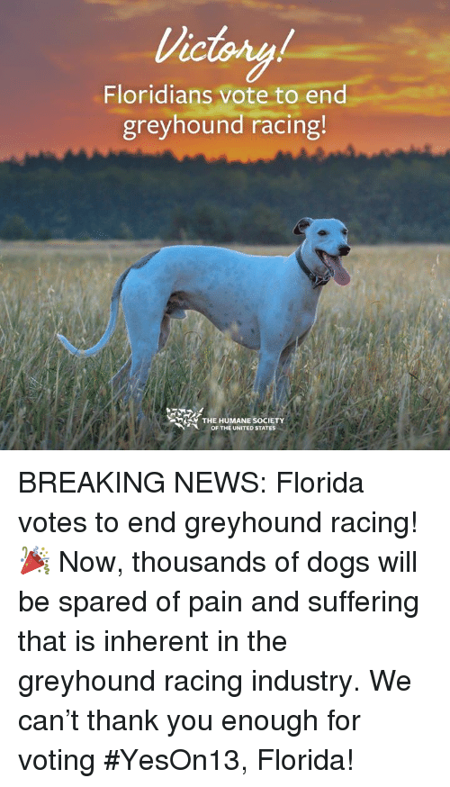 732ab3b8d Dogs, Memes, and News: Victory LC Floridians vote to end greyhound racing R
