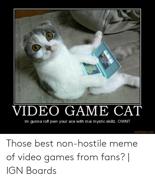 VIDEO GAME CAT Im Gunna Rofl Pwn Your Ace With Mai Mystic