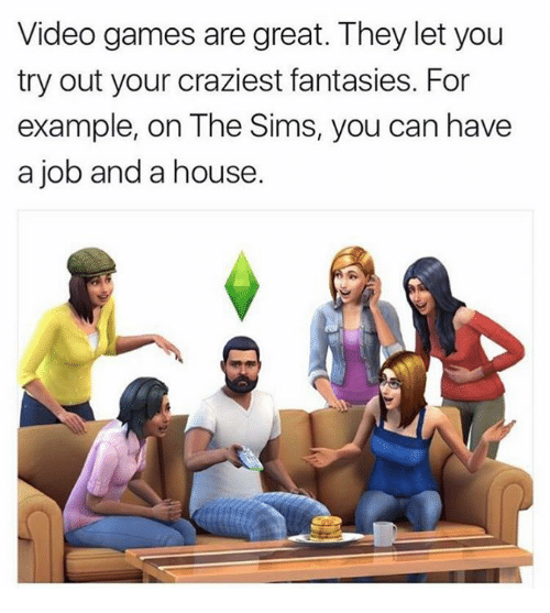 Dank, The Sims, and Video Games: Video games are great. They let you  try out your craziest fantasies. For  example, on The Sims, you can have  a job and a house.