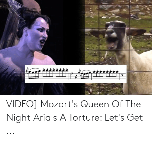 VIDEO Mozart's Queen of the Night Aria's a Torture Let's Get