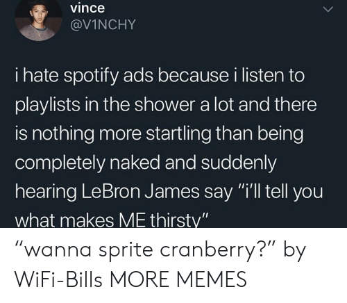 "Dank, LeBron James, and Memes: vince  @VİNCHY  i hate spotify ads because i listen to  playlists in the shower a lot and there  is nothing more startling than being  completely naked and suddenly  hearing LeBron James say ""i'll tell you  what makes ME thirsty"" ""wanna sprite cranberry?"" by WiFi-Bills MORE MEMES"