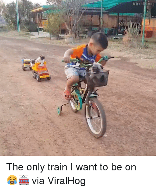 Dank, 🤖, and Trains: Viral Egg The only train I want to be on 😂🚋  via ViralHog