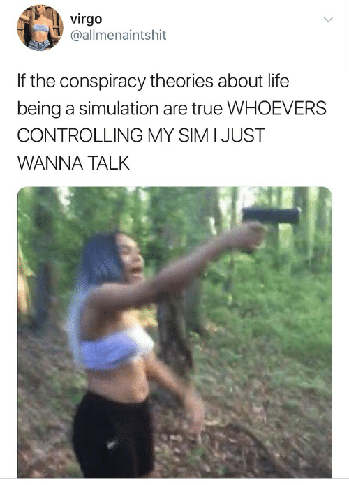 Life, True, and Virgo: virgo  @allmenaintshit  If the conspiracy theories about life  being a simulation are true WHOEVERS  CONTROLLING MY SIM I JUST  WANNA TALK