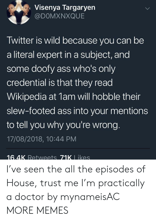Ass, Dank, and Doctor: Visenya Targaryen  @DOMXNXQUE  Twitter is wild because you can be  a literal expert in a subject, and  some doofy ass who's only  credential is that they read  Wikipedia at 1am will hobble their  slew-footed ass into your mentions  to tell you why you're wrong.  17/08/2018, 10:44 PM  16.4K Retweets 71K L ikes I've seen the all the episodes of House, trust me I'm practically a doctor by mynameisAC MORE MEMES