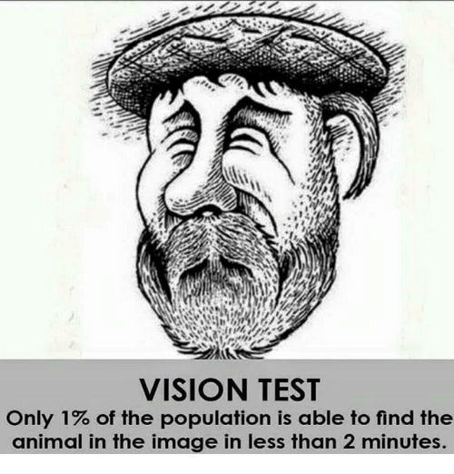 VISION TEST Only 1% of the Population Is Able to Find the