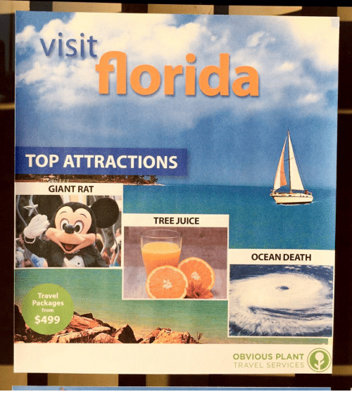 Juice, Death, and Florida: visit  florida  TOP ATTRACTIONS  GIANT RAT  TREE JUICE  OCEAN DEATH  Travel  Packages  from  $499  OBVIOUS PLANT  TRAVEL SERVICES