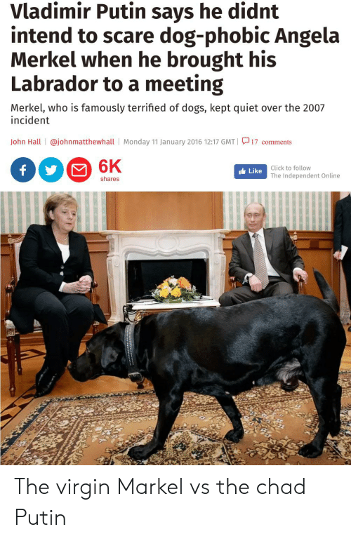 Click, Dogs, and Scare: Vladimir Putin says he didnt  intend to scare dog-phobic Angela  Merkel when he brought his  Labrador to a meeting  Merkel, who is famously terrified of dogs, kept quiet  incident  over the 2007  John Hall @johnmatthewhall Monday 11 January 2016 12:17 GMT | 17 comments  6K  f  Click to follow  Like  The Independent Online  shares The virgin Markel vs the chad Putin