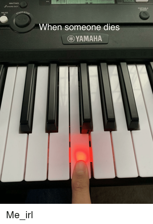Voice, Grand, and Waiting...: VOICE  MIN  WAITING  CHORD DICT  PORTABLE  GRAND  PAUSE  START/S  When someone dies  YAMAHA