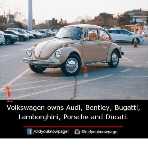 Memes Porsche And Lamborghini Volkswagen Owns Audi Bentley Bugatti