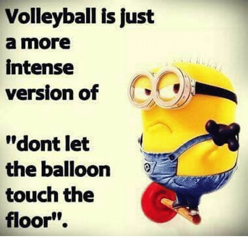 "Volleyball, Touch, and Balloon: Volleyball is just  a more  intense  version of  ""dont let  the balloon  touch the  floor"""