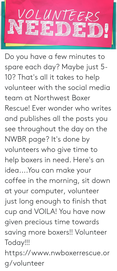 Memes, Precious, and Social Media: VOLUNTEERS  NEEDED! Do you have a few minutes to spare each day?  Maybe just 5-10?  That's all it takes to help volunteer with the social media team at Northwest Boxer Rescue!  Ever wonder who writes and publishes all the posts you see throughout the day on the NWBR page?  It's done by volunteers who give time to help boxers in need.  Here's an idea....You can make your coffee in the morning, sit down at your computer, volunteer just long enough to finish that cup and VOILA! You have now given precious time towards saving more boxers!!  Volunteer Today!!! https://www.nwboxerrescue.org/volunteer