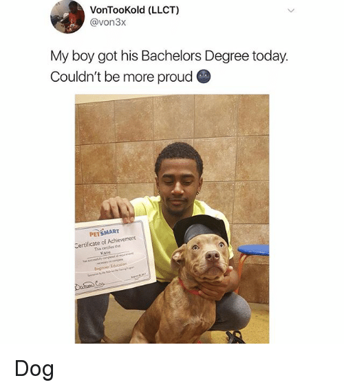Memes, Petsmart, and Today: VonTooKold (LLCT)  @von3x  My boy got his Bachelors Degree today.  Couldn't be more proud  PETSMART  Certificate of Achievement  This certies h  Kane Dog