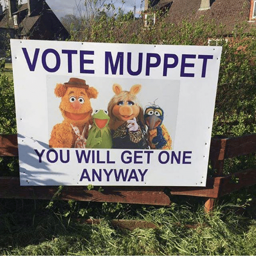 Image result for images Vote Muppet, you will get one anyway