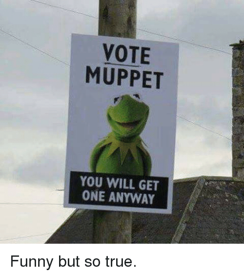 Funny Muppet Meme: VOTE MUPPET YOU WILL GET ONE ANYWAY