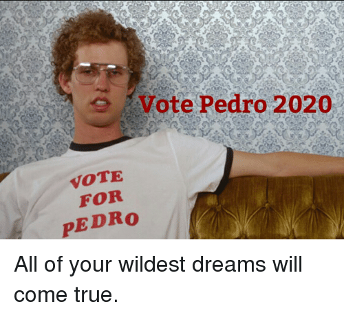 Vote Pedro 2020 Vote For Pedro All Of Your Wildest Dreams Will