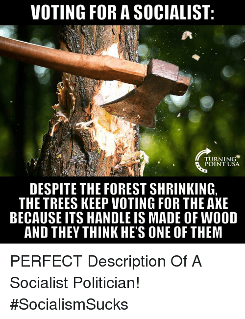 Memes, Trees, and Socialist: VOTING FOR A SOCIALIST  TURNING  POINT USA  DESPITE THE FOREST SHRINKING,  THE TREES KEEP VOTING FOR THE AKE  BECAUSE ITS HANDLE IS MADE OF WOOD  AND THEY THINK HE'S ONE OF THEM PERFECT Description Of A Socialist Politician! #SocialismSucks