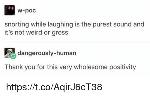 Memes, Weird, and Thank You: W-poc  snorting while laughing is the purest sound and  it's not weird or gross  dangerously-human  Thank you for this very wholesome positivity https://t.co/AqirJ6cT38