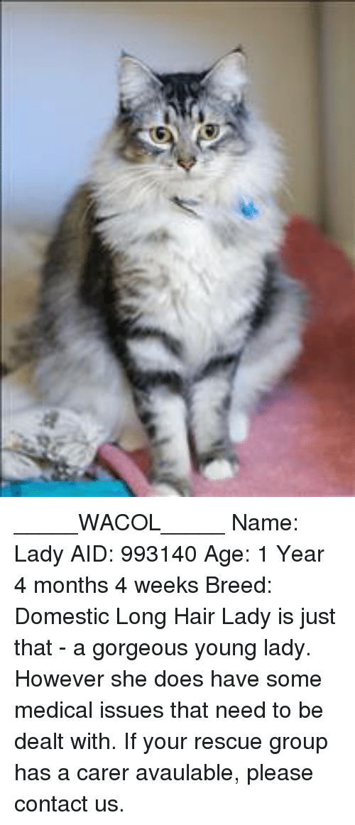 _____WACOL_____ Name Lady AID 993140 Age 1 Year 4 Months 4 Weeks ...
